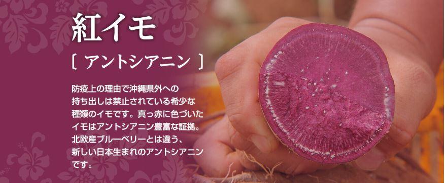 アントシアニン豊富な紅芋